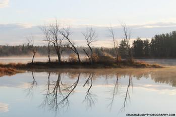 Misty Seasons