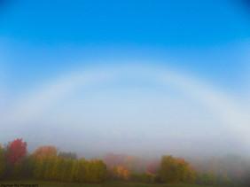 Fog Bow in Autumn