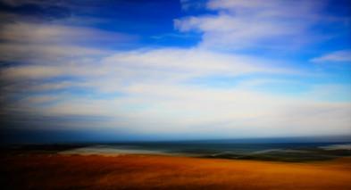 Rustic Pastures