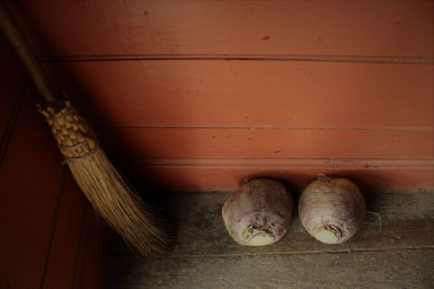 The Broom and Turnips