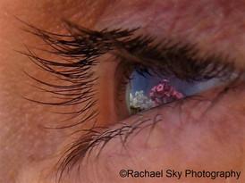 Flowers in my Eye