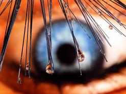 Eye Lash Drops