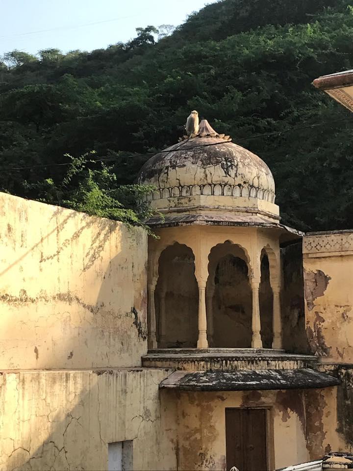 Sixth Form India Trip 2018