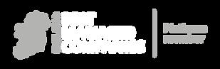BMC_wordmark_0320_Platinum_PRI _Inverted