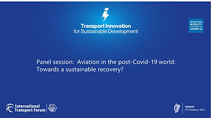 Panel session - Aviation in the post-Covid-19 world.jpg