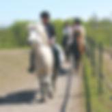 Ridturer och ridskola på islandshästar i Höllviken i Vellinge kommun.