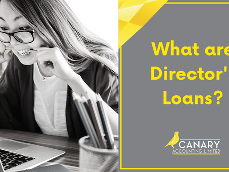 What are Director's Loans?