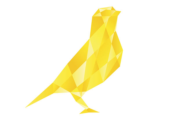 Canary-Accounting-Limited-Bird-Icon_Web.