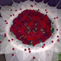 Nádherná růže_edited.jpg
