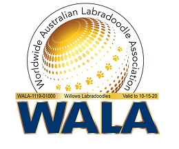 Willows Labradoodles WALA Logo-1119-0100