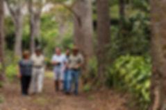 Web - Coffee Bird - Finca Acatenango 201