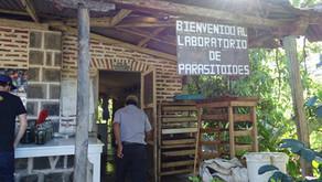 2016 Harvest Update: San Jeronimo Miramar
