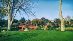 Japanese Garden - La Serena - Chile
