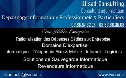 logo wisad consulting.jpg