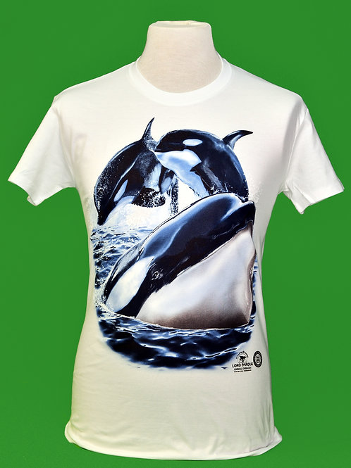 C.H. 3 Orcas