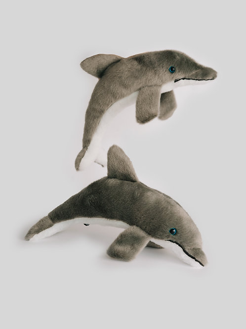 Delfín boca negra