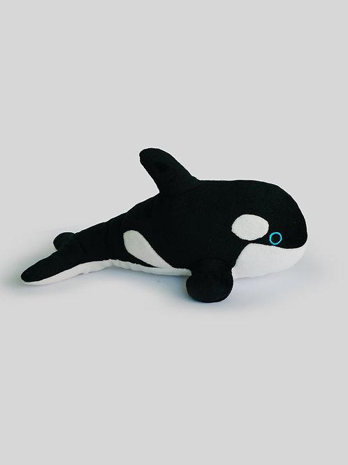 Orca Nueva