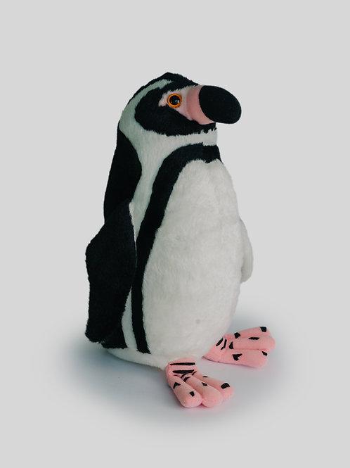 Pingüino Humbolt