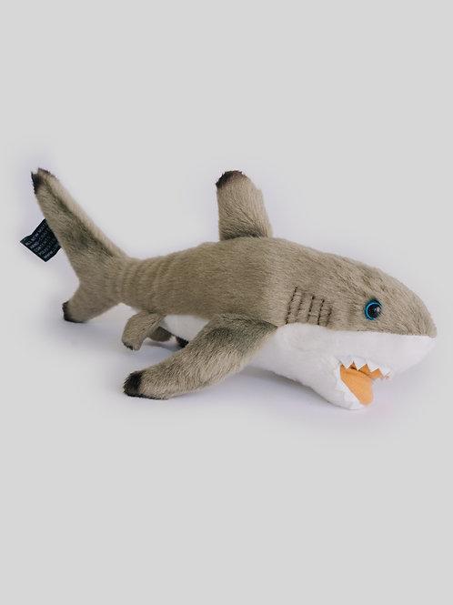 Tiburón gris grande