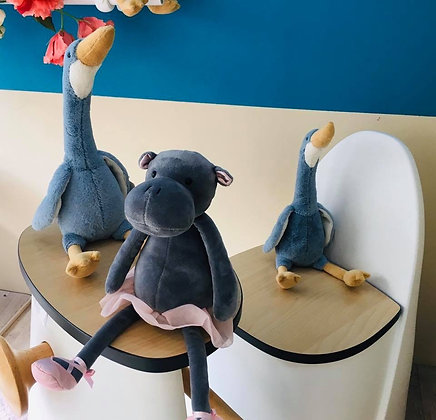 Darcy hippo