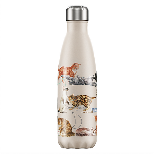 Bouteille isotherme chats 500ml