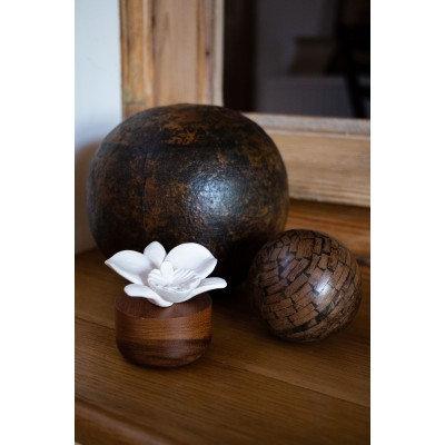 Diffuseur de parfum orchidée du Népal blanche