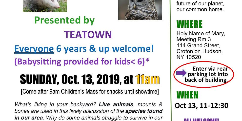 Sustainable Sunday Presentation - October 13