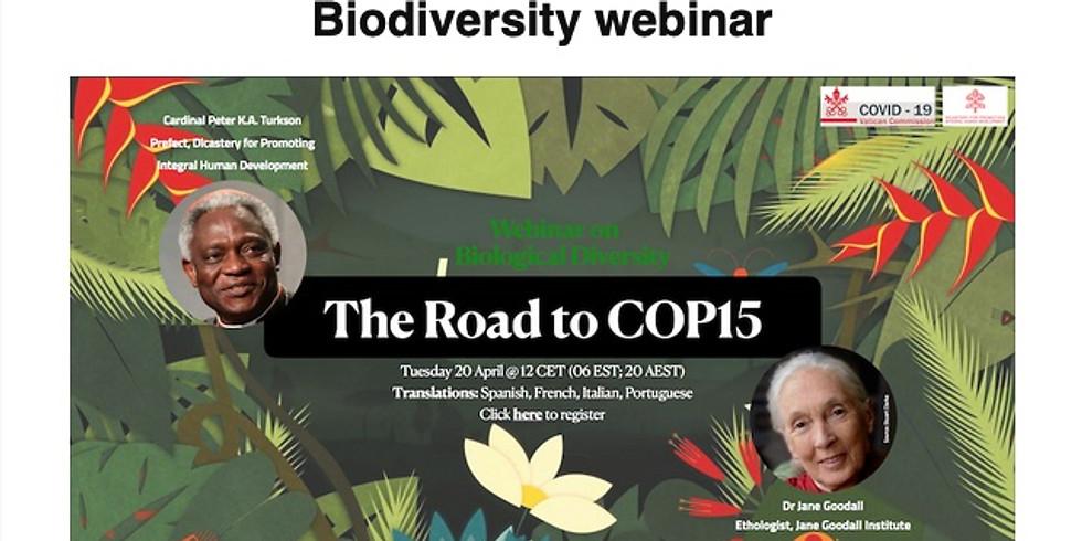 Global Catholic Climate Movement:  Biodiversity Webinar and Laudato Si' Week 2021