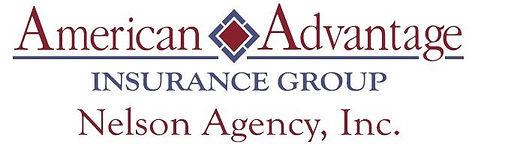 AmerAdv -Logo.jpg