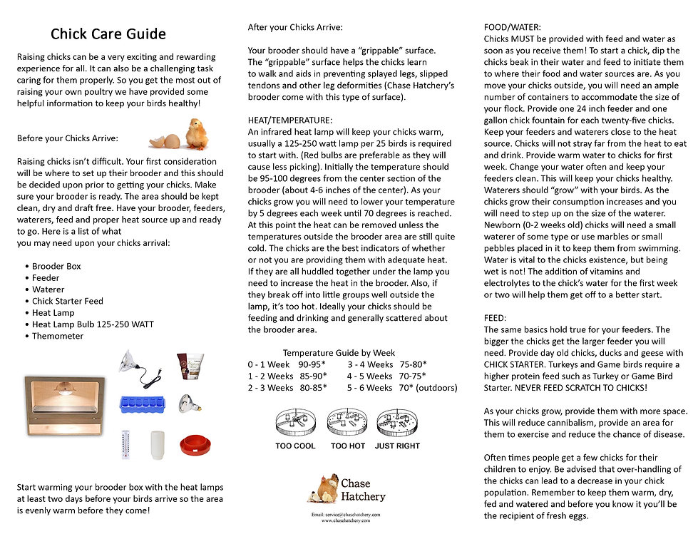 Chick%20Care%20Guide_edited.jpg