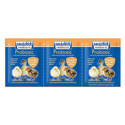 Probiotic Supplement, 0.17 oz, Pack of 3