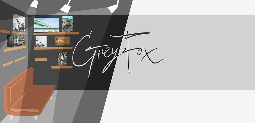 greyfoxconceptspace.jpg