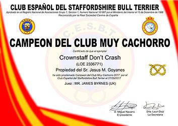 DIPLOMA CAMPEON CLUB MUY CACHORRO 2017.j