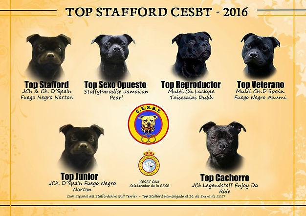 TOP SBT 2016.jpg
