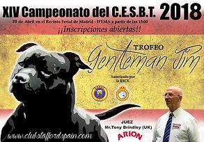 Cartel Campeonato del Club 2018ARION.jpg
