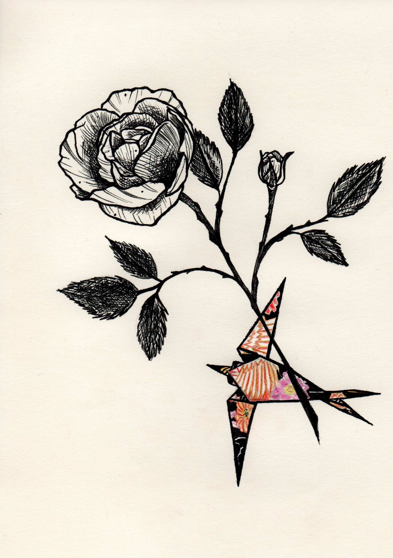 Rose-Hirondelle