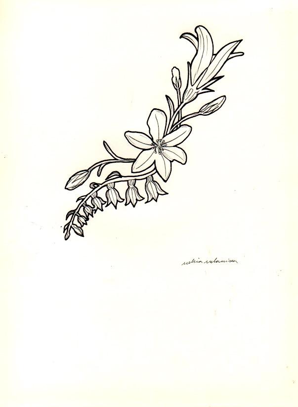 flowers Mucha styles