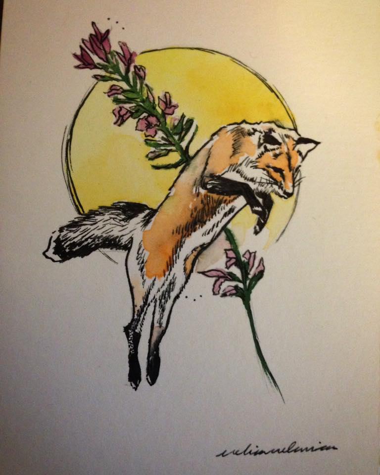 Lavande fox