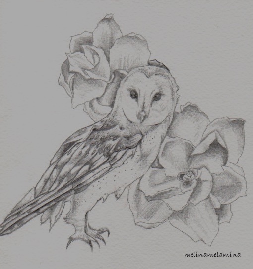 Chouette-Owl