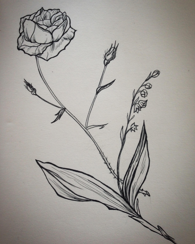 Rose-Lilas