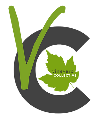 Vineyard Collective Simple Logo Clean.pn