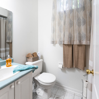 Interior Basement Bath.jpg
