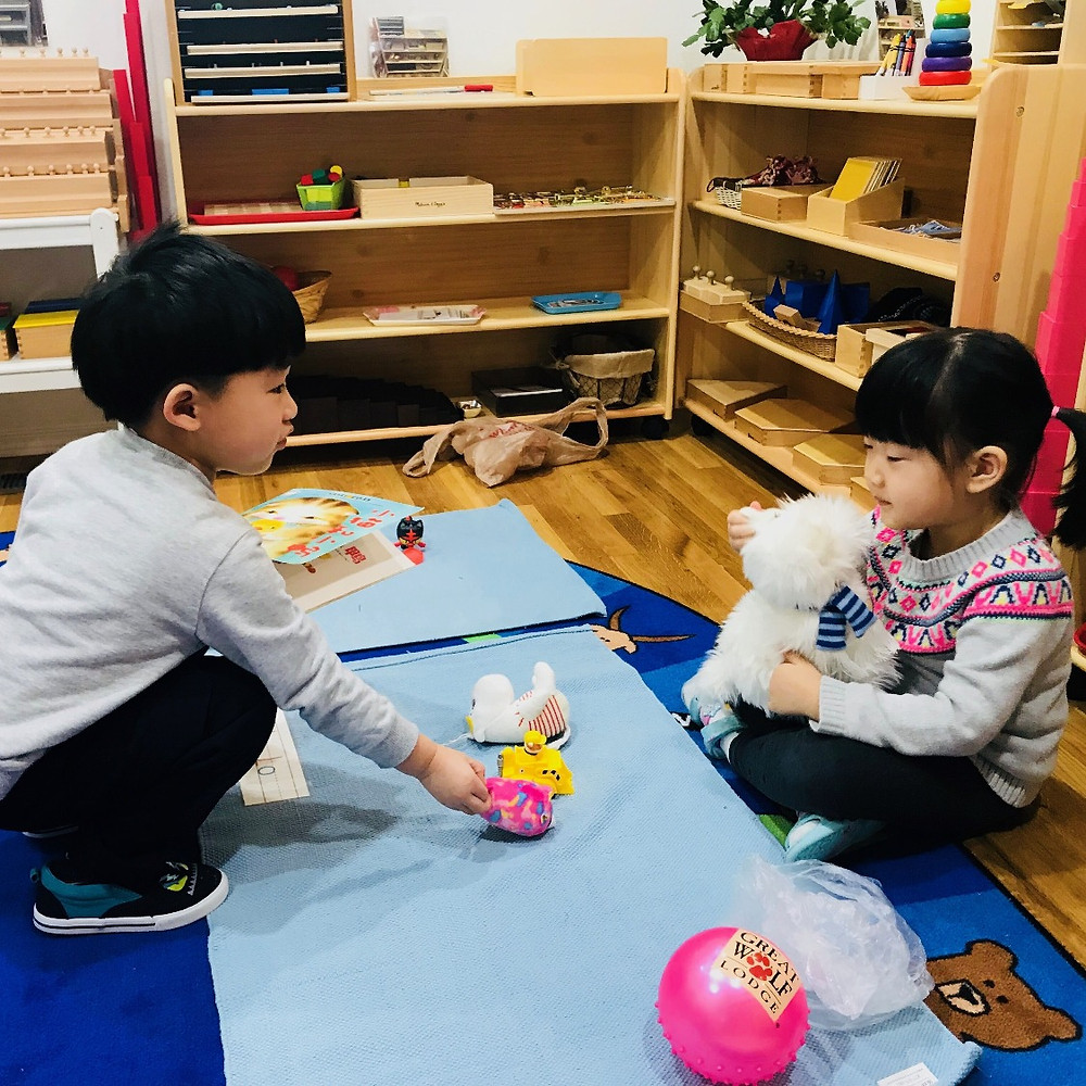 Montessori social: trade what we love