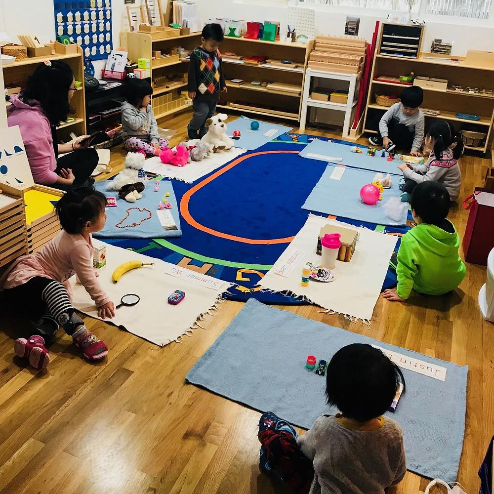 Montessori social: experience the trading