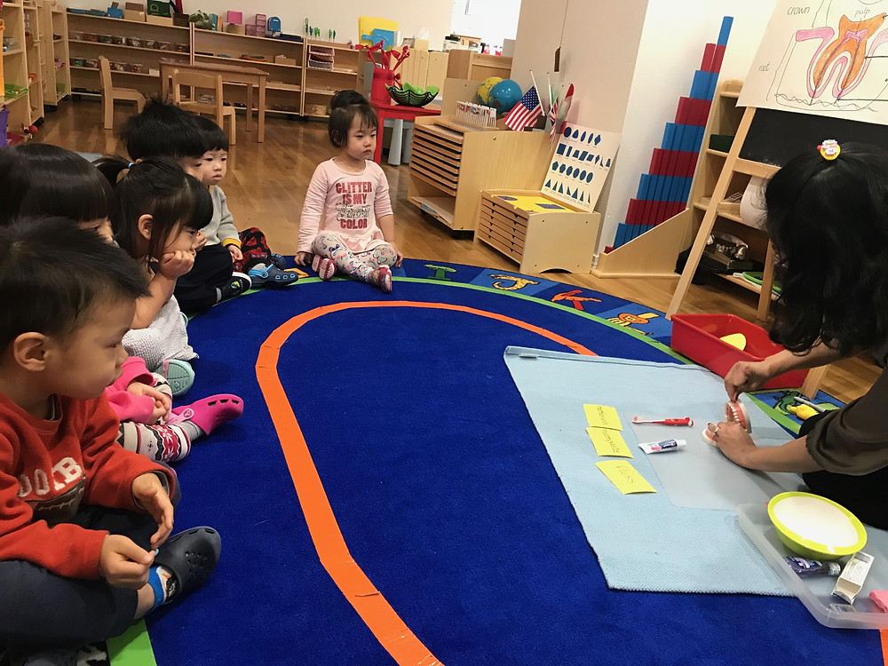 Montessori Circle Time: teeth health