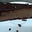 Thumbnail: Mrak Torta