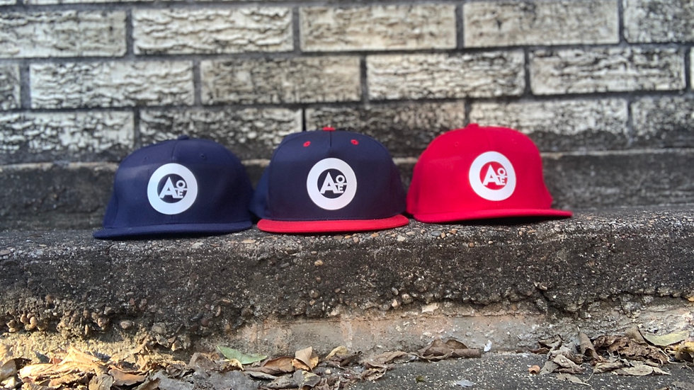 AOE TEAM USA FITTED AND SNAPPACK PACK