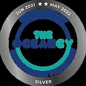 Silver jun21-may22_Tavola disegno 1.png