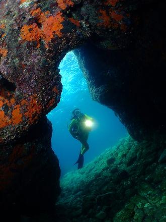 donna sub in immersione