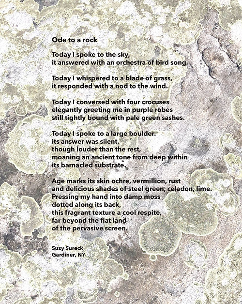 37_Sureck_Ode to a Rock.jpg